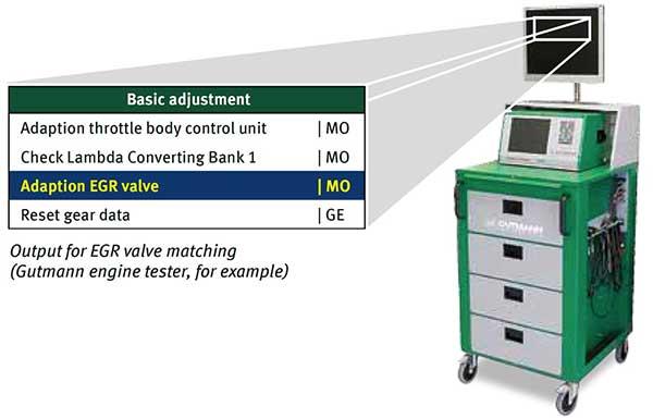 Exhaust Gas Recirculation Valves (EGR)